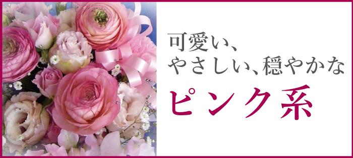 可愛い、やさしい、穏やかな ピンク系